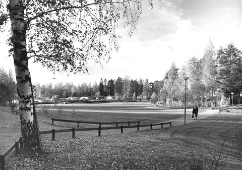 Kuva lähiön keskellä olevasta nurmialueesta.