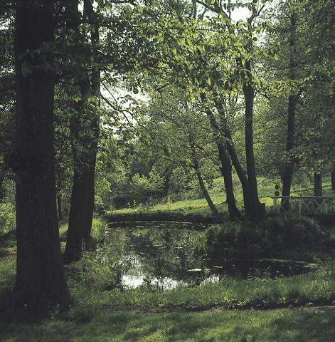 Värivalokuva puiston keskellä olevasta lammesta. Kuvassa lehtipuiden ympäröimän lammen yli kulkee puinen kävelysilta.