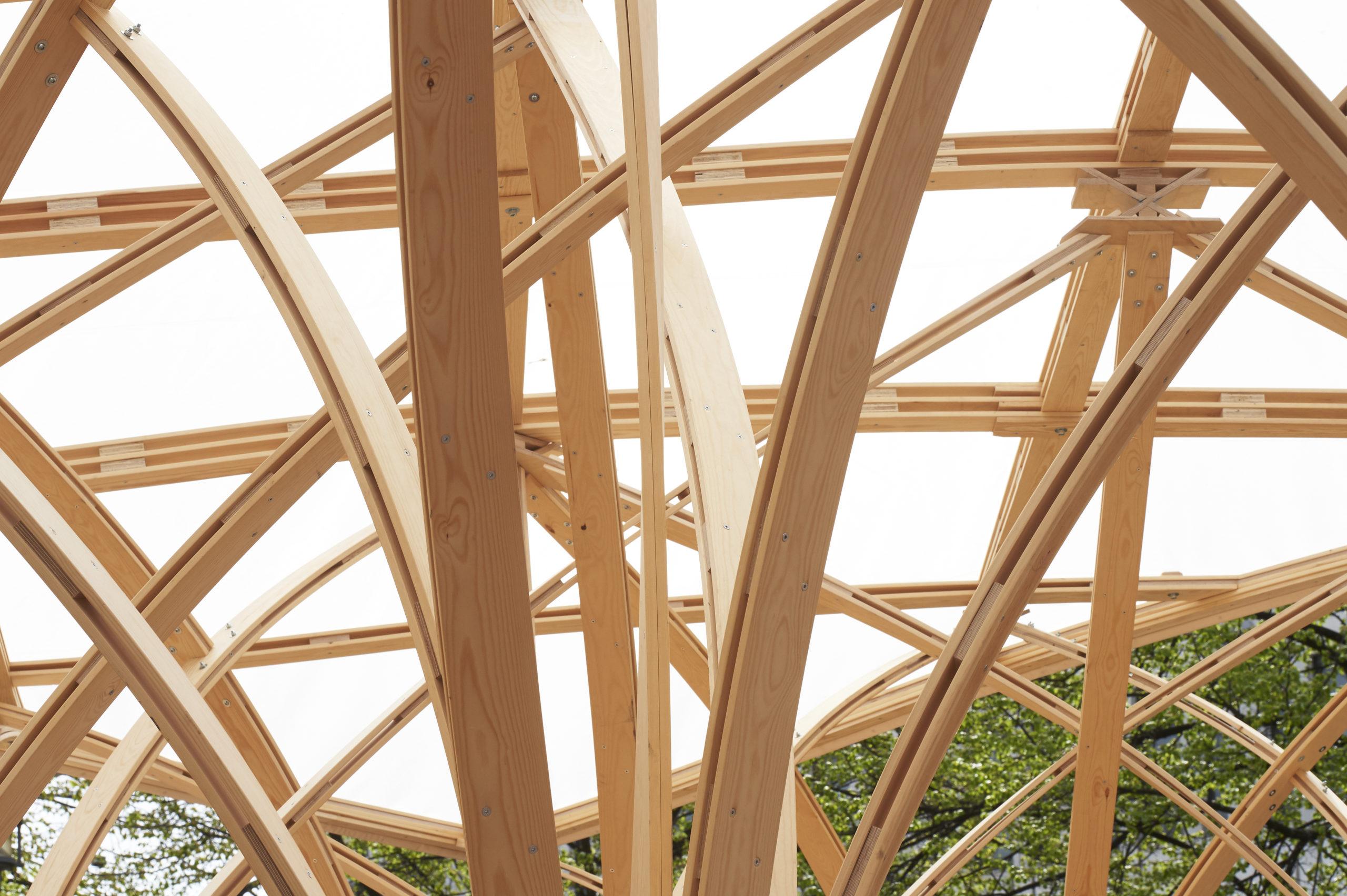 Kuva Säie-paviljongin puisesta kattorakenteesta
